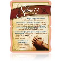 CS03 salmo 13