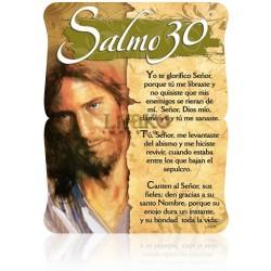 CS07 salmo 30