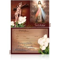 Señor de la misericordia