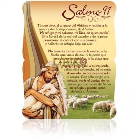 CS10 salmo 91