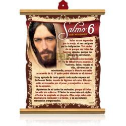 CS02 salmo 6