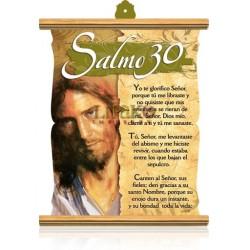 CS07 salmo 30 (frente)