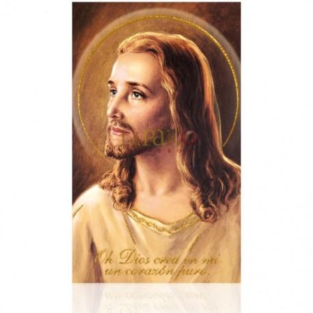 BM20 Rostro de Cristo