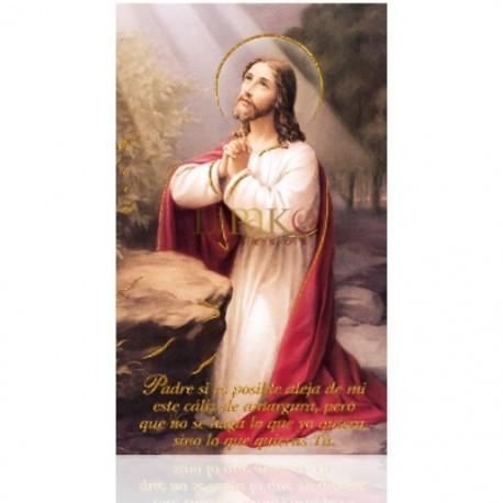 BM24 Jesús Orando