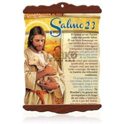 CS04 Salmo 23