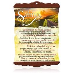 CS05 Salmo 25