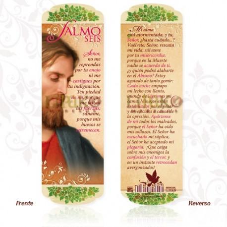 SM109 Salmo 6