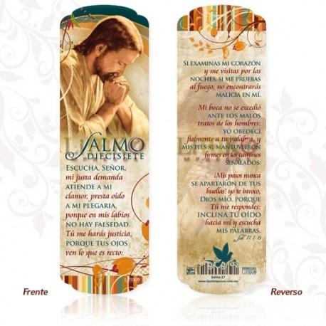 SM112 Salmo 17