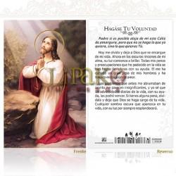 5OPM16H Jesús orando ORO