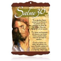 CS07M Salmo 30