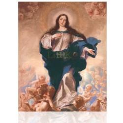 CMD17H Inmaculada Concepción
