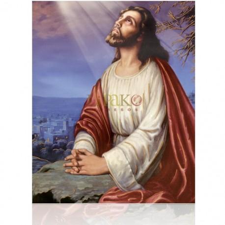 CMD19H Jesús Orando