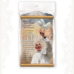 CC104MB Papa Francisco Visita A México