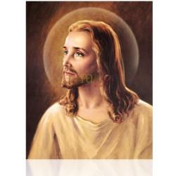 Cristo Lasallista