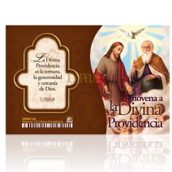 NC10 novena divina providencia