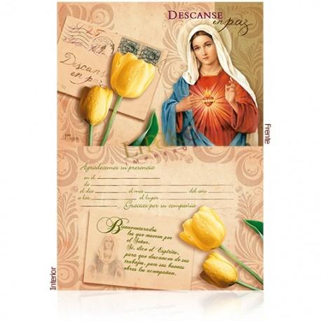 EA8 aniversario virgen y cristo