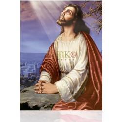 CMA19 L Jesús orando