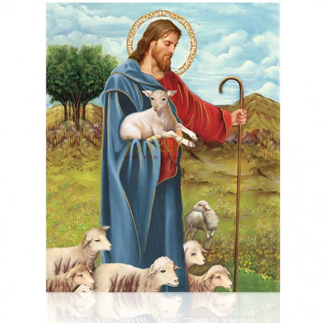 CMD36L pastor (oveja)