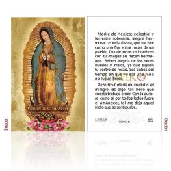 090ES24L Virgen de Guadalupe